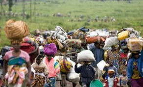Over U.S.$270 Million Needed For Refugees in Tanzania - UN