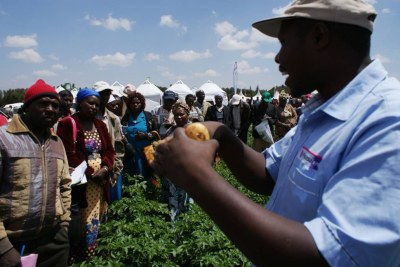 Farmers receive training on how to produce potatoes for processors at the Ol Jorok Agriculture Training Center in central Kenya, March 3, 2017.