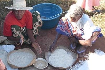 (Photo d'archives) - Des femmes malgaches au travail