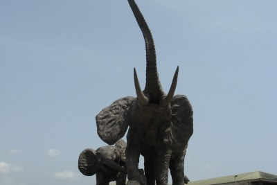 Players in the tourism sector have urged the government to cut ties with countries trading in ivory (file photo).