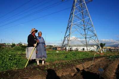 Farmers at Fezeka food garden in Gugulethu in Cape Town, South Africa (file photo).
