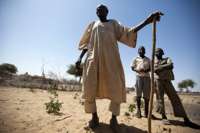 Un chef de village avec des deux enfants à Hashaba, à 20 kilomètres de Shangel Tubaya, au Nord du Darfur.