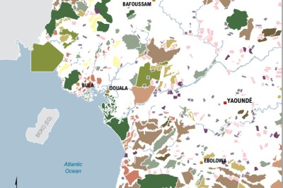 A new version of an interactive forest atlas will help policy makers improve land governance.