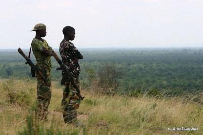 Jeunes homme armées dans le Nord-Kivu
