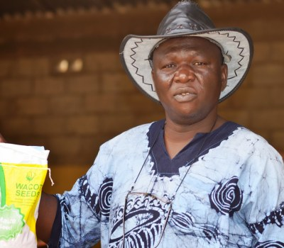 Cassava - Underground Root Promises Above-Ground Transformation in Nigeria