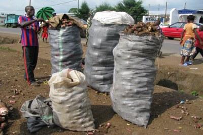 (Photo d'archives) - Au Cameroun, la mise en place d'une bourse des produits agricoles est en débat pour régler la problématique du transport et de la distribution des produits issus de l'agriculture