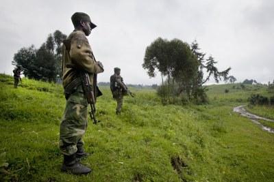 Des soldats congolais au Nord-Kivu le long de la frontière avec le Rwanda.
