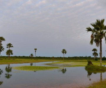 Village de Enampor en Casamance au Sénégal