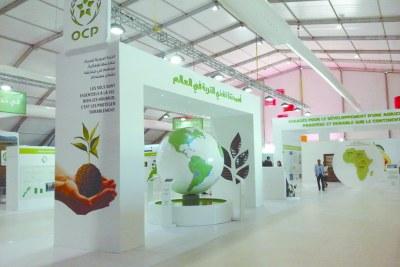 Filiale du Groupe OCP, leader mondial du marché du phosphate, OCP AFRICA est une nouvelle entreprise dédiée à l'Afrique