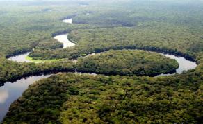ONU Environnement publie son rapport annuel 2018