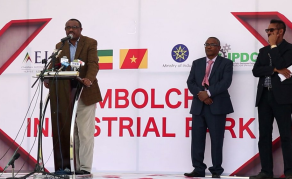 Ethiopia to Open Six Industrial Parks in Three Months
