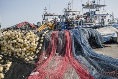 Filets de pêche colorés (archive)