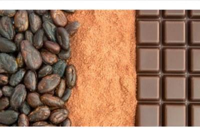 « Qu'est-ce qu'il y a de si compliqué à fabriquer du chocolat ? Le prix du cacao baisse toujours, mais jamais le prix du chocolat ! » – Akinwumi Adesina, président de la Banque africaine de développement