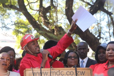 MDC Alliance's Nelson Chamisa (file photo).