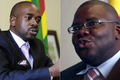 Nelson Chamisa and Biti.