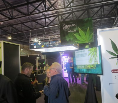 Cannabis Expo Sheds Light on Budding Marijuana Industry in South Africa