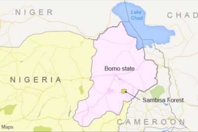 Fleeing Borno Residents Return After Boko Haram Attack