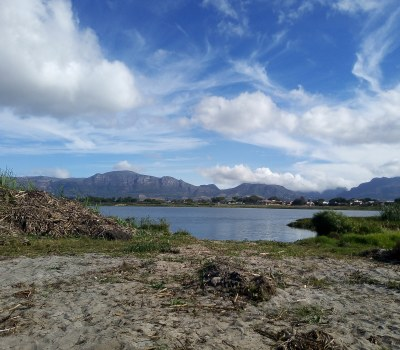 Cape Town Community Gets Behind Restoration at Princess Vlei