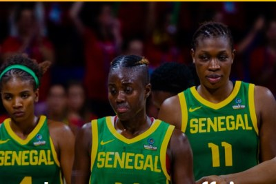 Afobasket féminin 2019