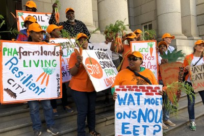Farmers and workers from the Philippi Horticultural Area demonstrated on the steps of the Western Cape High Court.