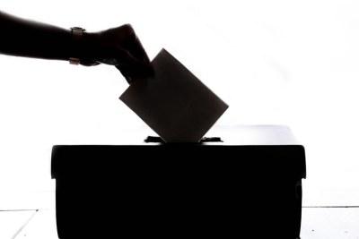 Vote (file photo).