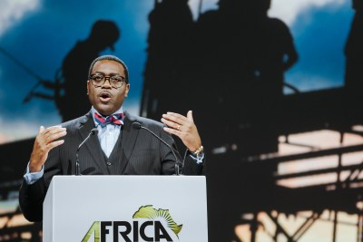 African Development Bank (AfDB) president Akin Adesina at the 2019 Africa Investment Forum.