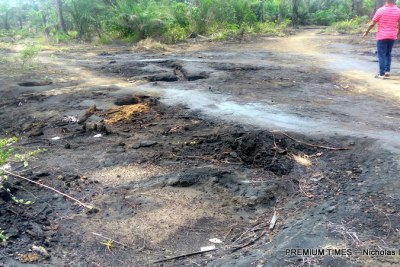 An oil spill near farmland in K-Dere, Ogoniland (file photo).