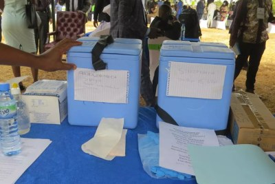 Coolers containing AstraZeneca and Sinopharm vaccines (file photo).