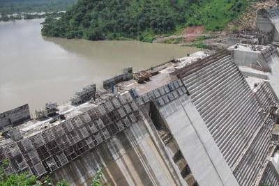 Bui Dam (file photo).